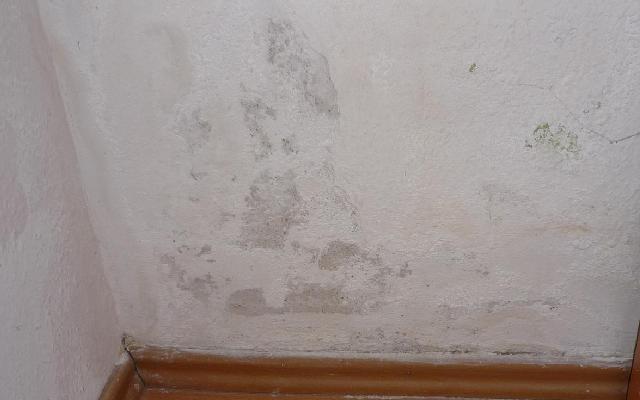 Pin auf Bautenschutzstoffe