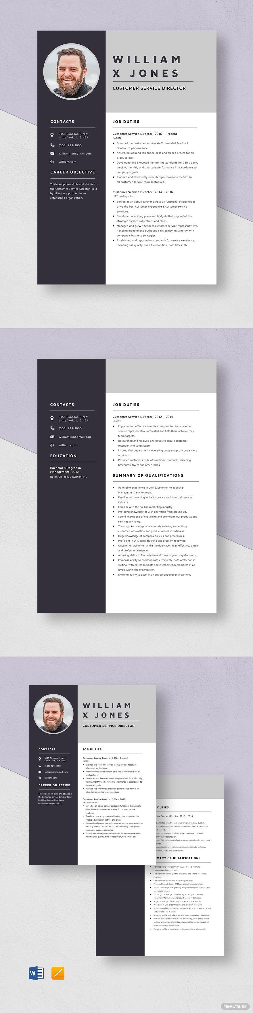 Customer service director resume template in 2020 resume