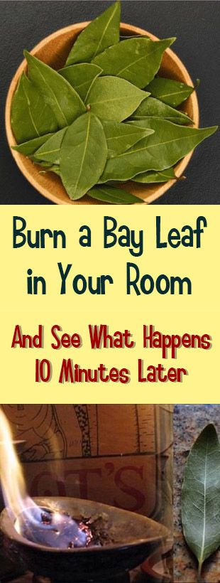 A single bay leaf might be all you need after a long