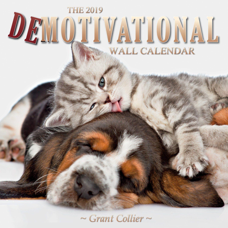 The 2019 Demotivational Wall Calendar Calendar August 1