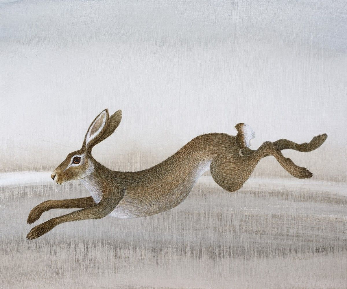Leaping Hare by Harriet Bane | reference images | Pinterest