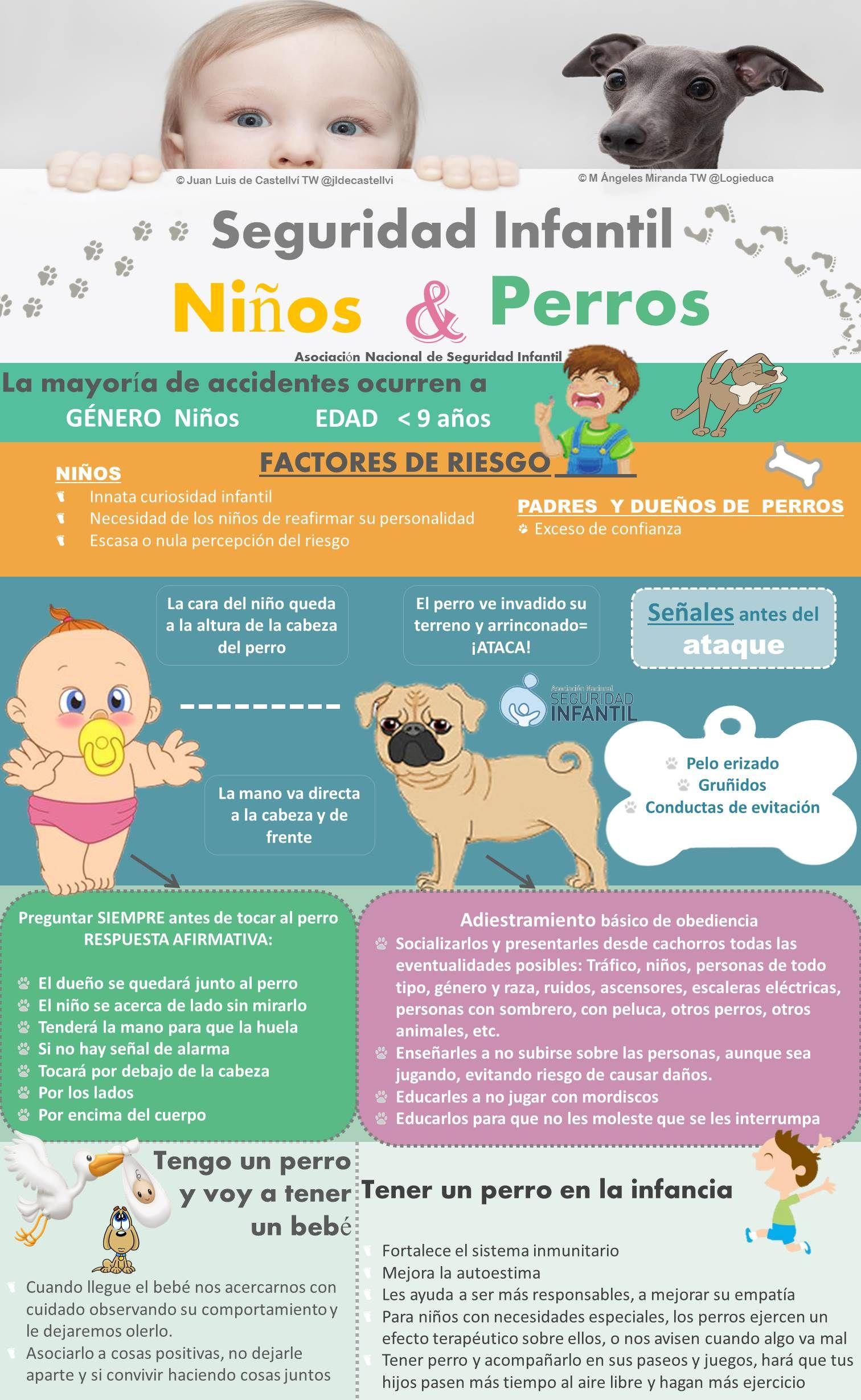 Niños Perros Y Seguridad Infantil Seguridad Infantil Perros Para Niños Dueños De Perros