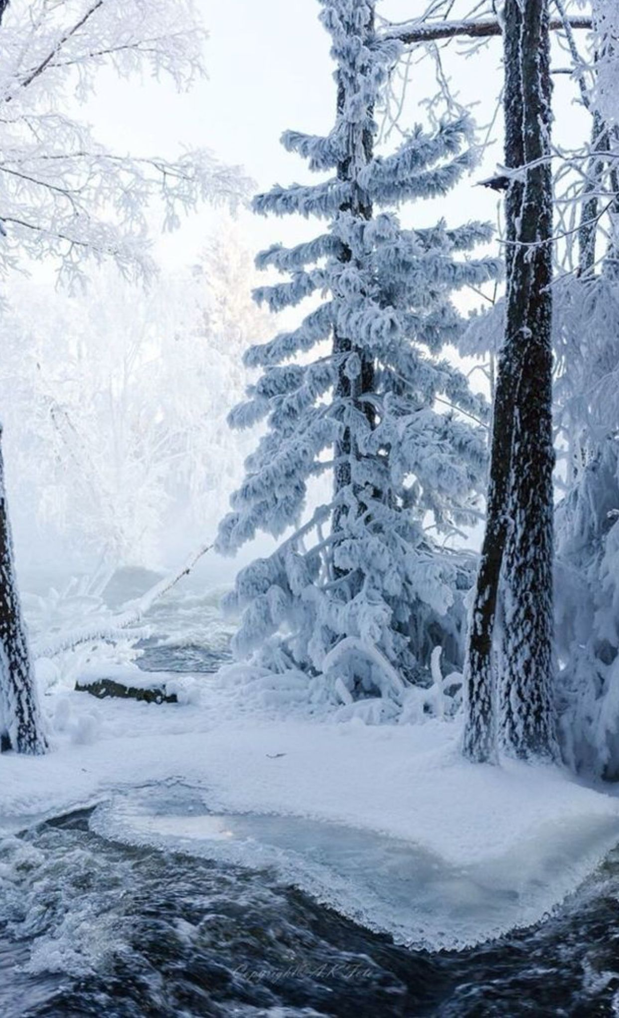 Pin By Terry Hawkins On Snowy Pictures Beautiful Winter Scenes Winter Pictures