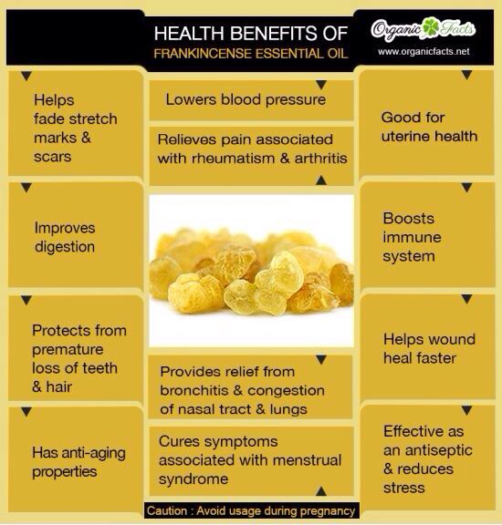 Https://www.youngliving.org/gina1028 Many uses for Frankincense oil. #frankincense #bible #health