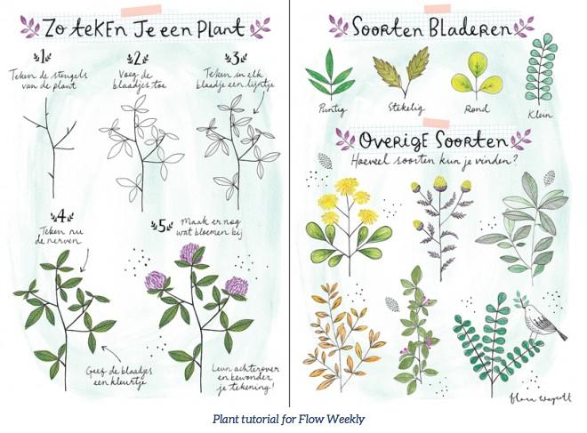 Flora Waycott - Plant tutorial for Flow Weekly #21 2015