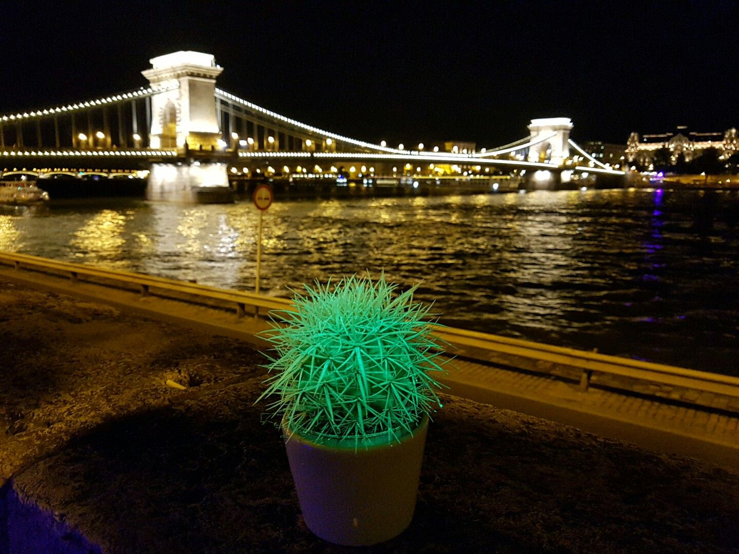 #flAVATAR Echinocactus at the Chain bridge