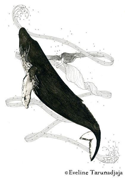 Humpback Whale © Eveline Tarunadjaja | TT | Pinterest | Ilustraciones