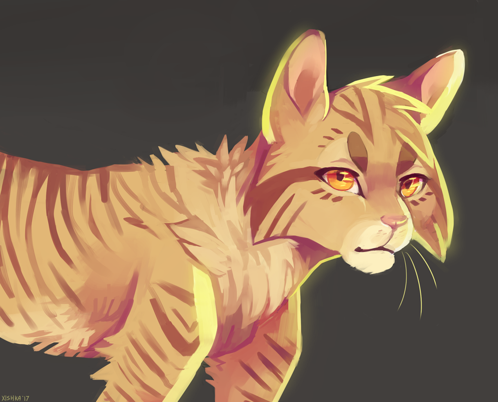 Lionblaze by on DeviantArt