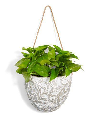 indoor hanging plants diy #Hangingplantsindoordiy #hangingplantsindoor