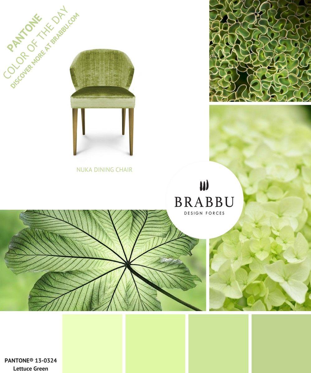 trouvez de l inspiration avec la couleur pantone du jour lettuce green projets de decoration d interieure contemporains pour obtenir les images en haute