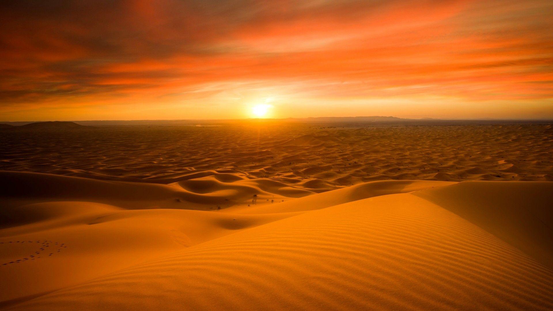 Sahara Desert Sand Dunes Sunset 5k Desert Background Sunset Nature Sunset Hd wallpaper sunset desert dunes sand