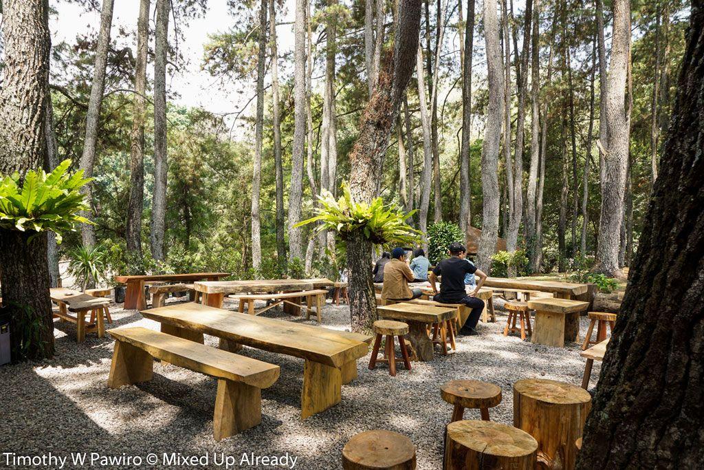 Indonesia Bandung Coffee Shop Armor Kopi Outdoor Seating Beside The Desain Restoran Rumah Pohon Desain Pencahayaan