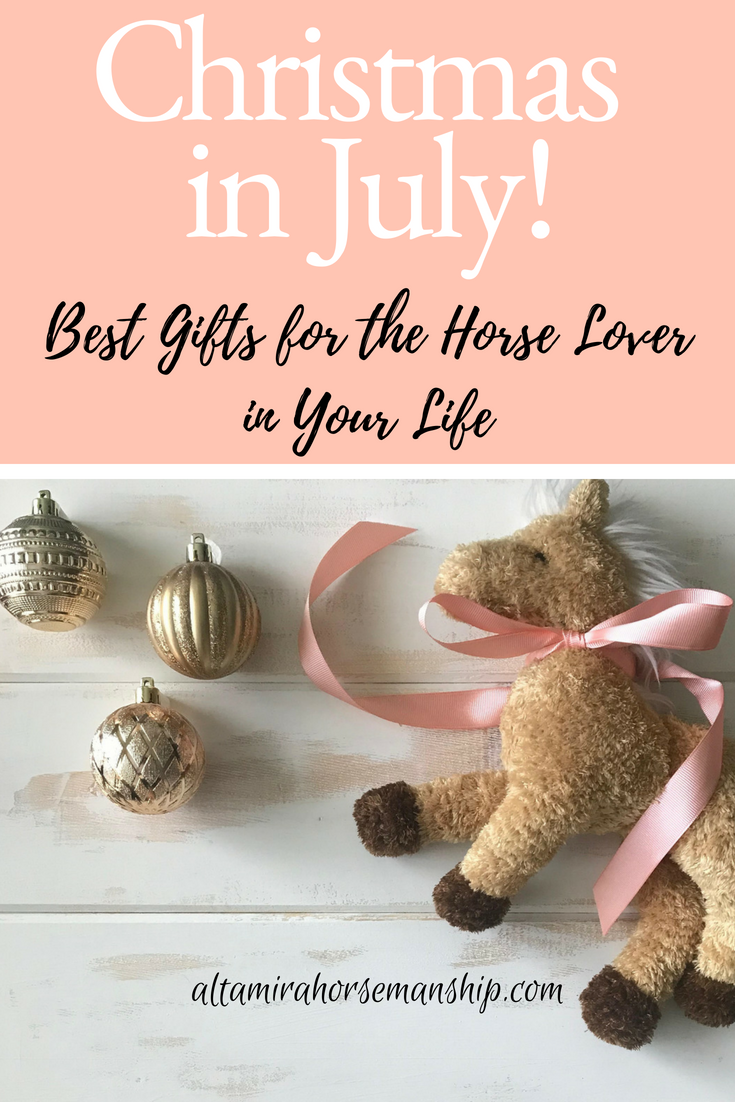 Best Christmas Gifts for the Horse Lover in Your Life ...