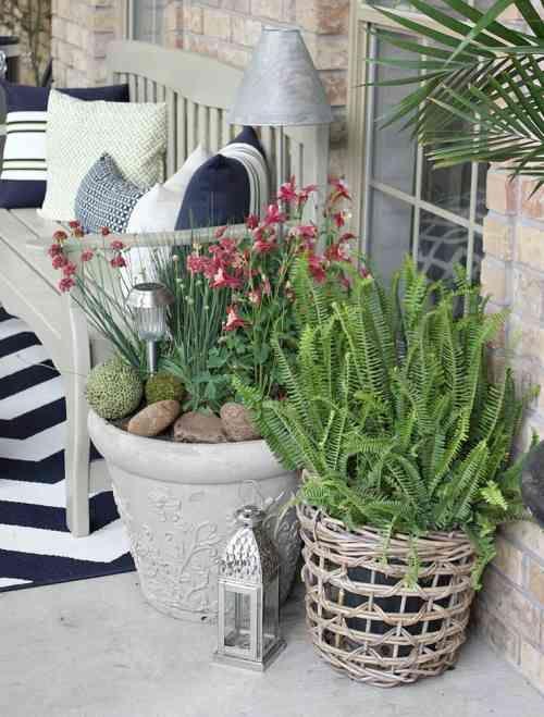 plante en pot pour terrasse 50 ides fraches - Plantes D Exterieur Terrasse