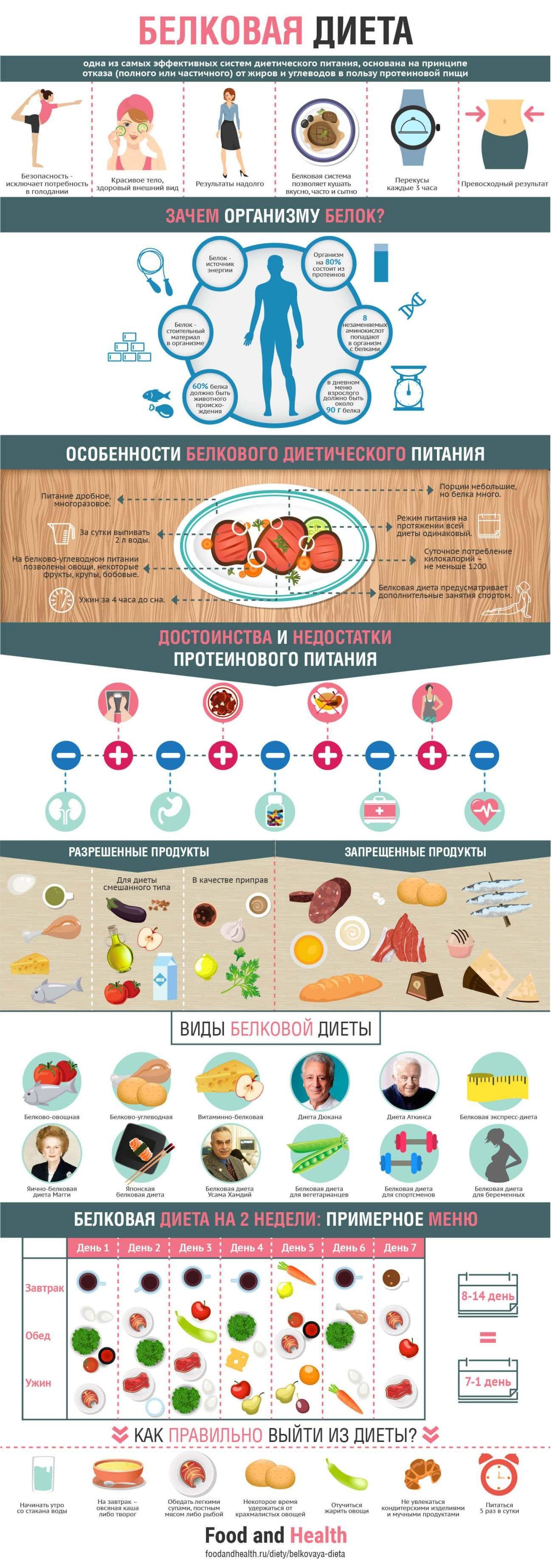 Белковая диета питания