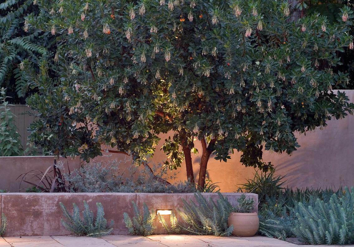 this is a garden by bernard trainor  u0026 associates  australian expat in california   this garden