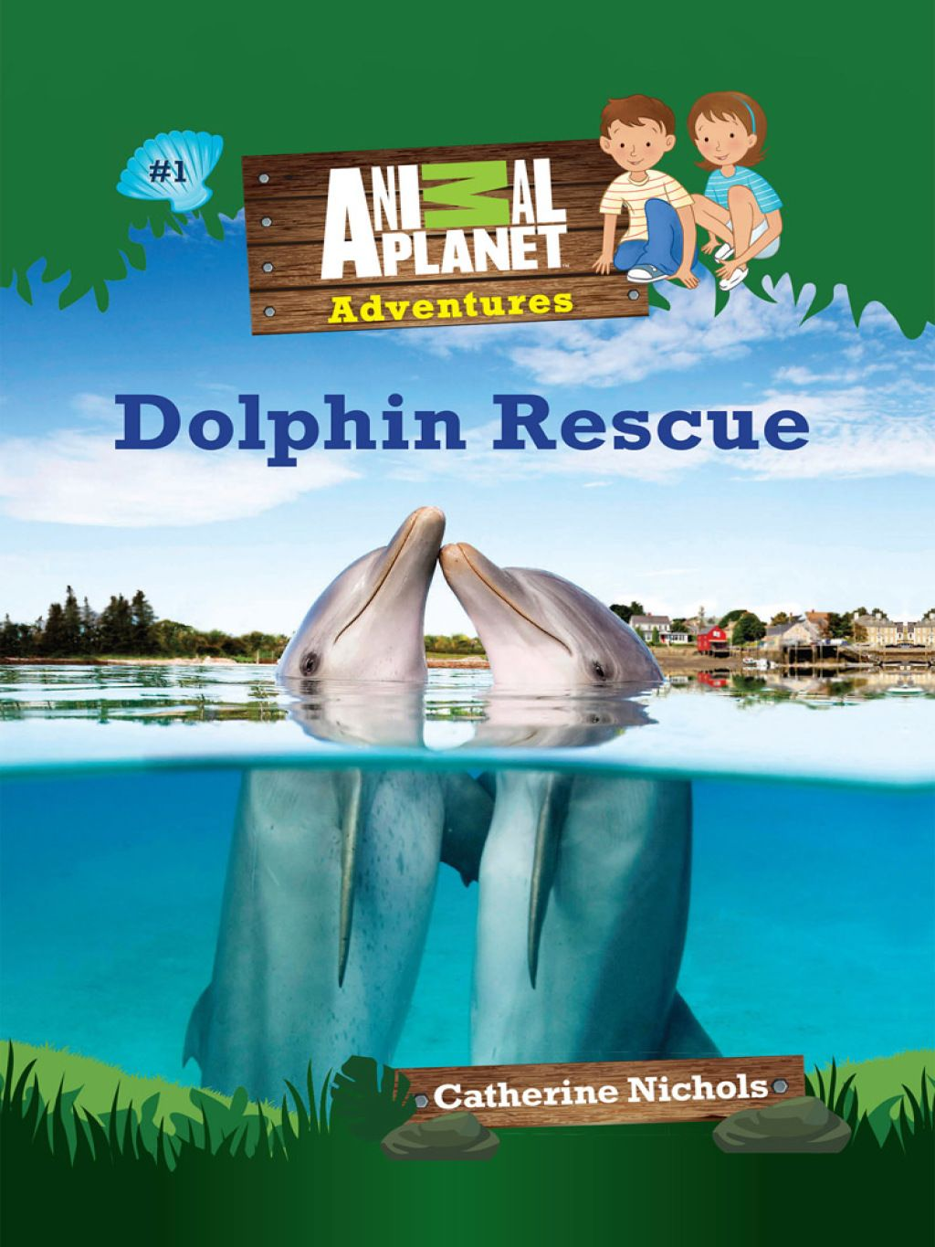 Dolphin rescue animal adventures chapter books 1