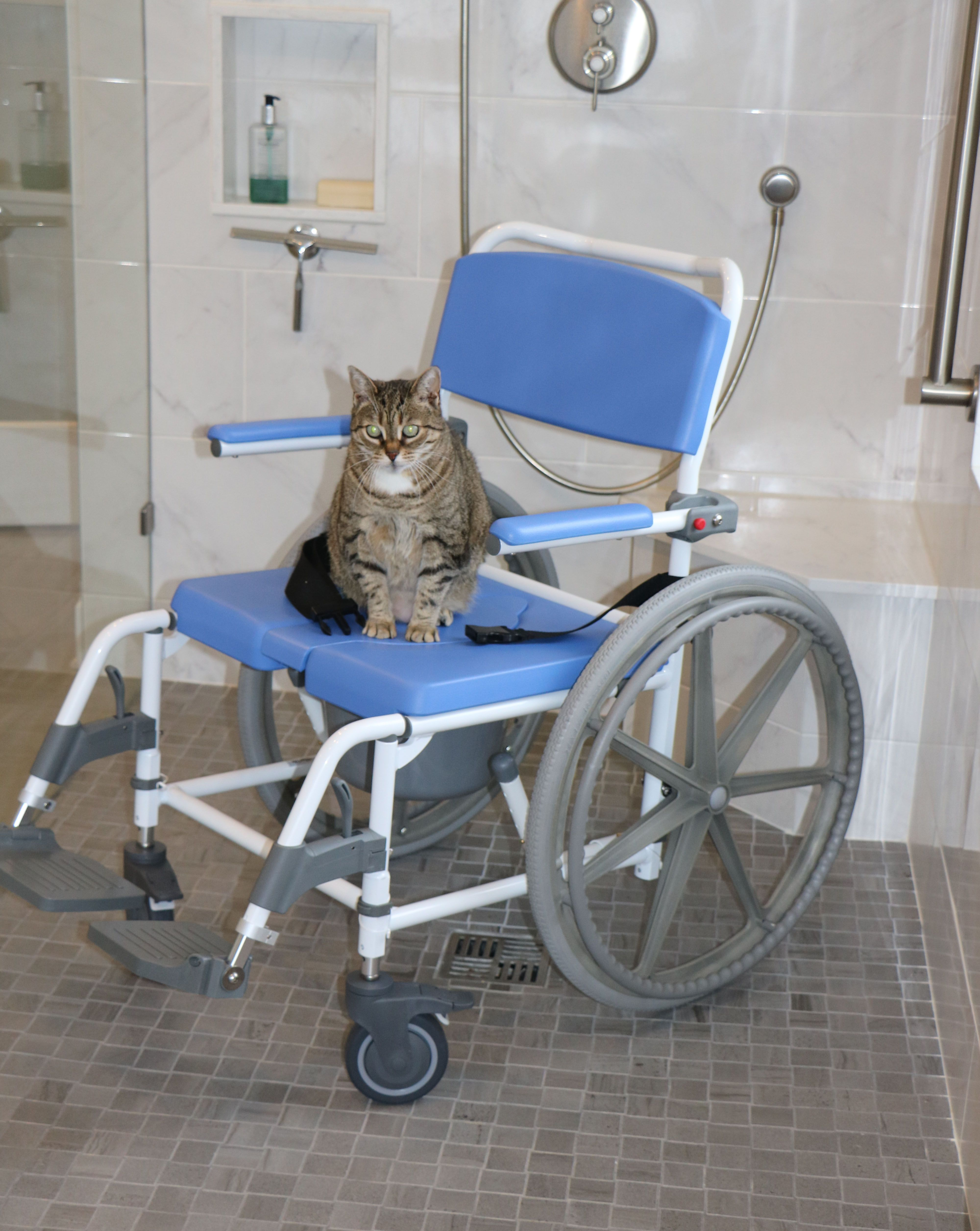 A shower wheelchair or a rolling shower chair is perfect