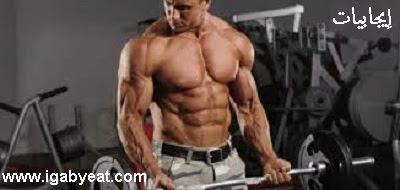 الأضلاع الأربعة لممارسة لعبة كمال الأجسام Muscle Bodybuilder Beauty Bodybuilding