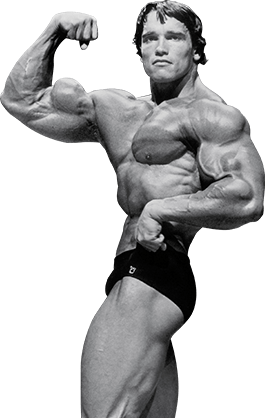 Arnold schwarzeneggers blueprint to cut training deporte salud bodybuilding arnold schwarzeneggers blueprint to cut training malvernweather Choice Image