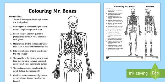 Colouring Mr. Bones Activity Sheet - The Human Body, human, body ...