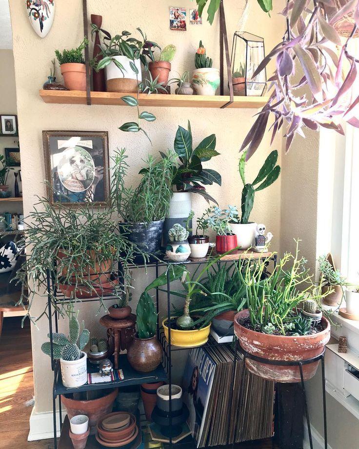indoor garden inspirational design