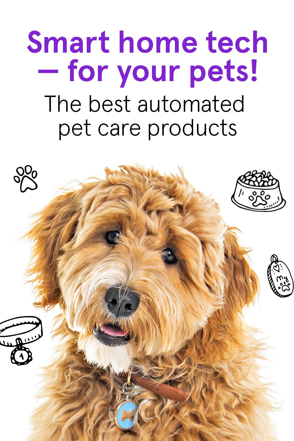 The Latest In Smart Home Technology For Your Pet Smart Home Technology Smart Home Home Technology