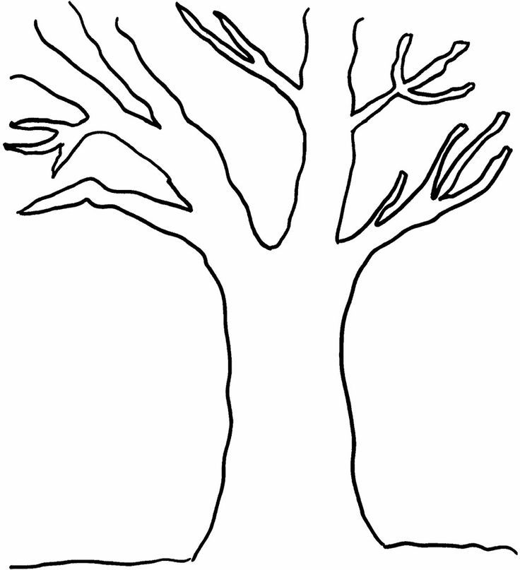 Coloring Page Fig Tree. Without Leaves Tree Coloring Page  Pages Download and print these coloring pages for