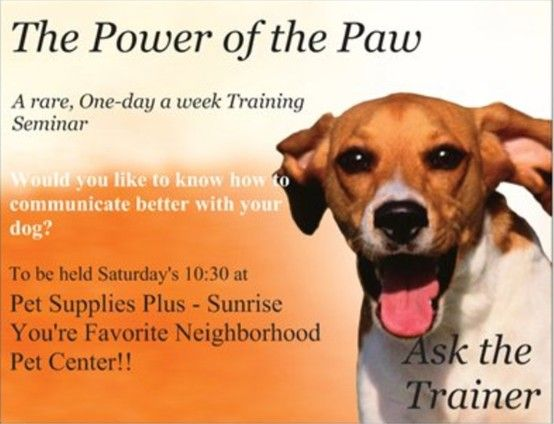 The Power Of The Paw Classes Pet Event Animal Rescue Natural Pet