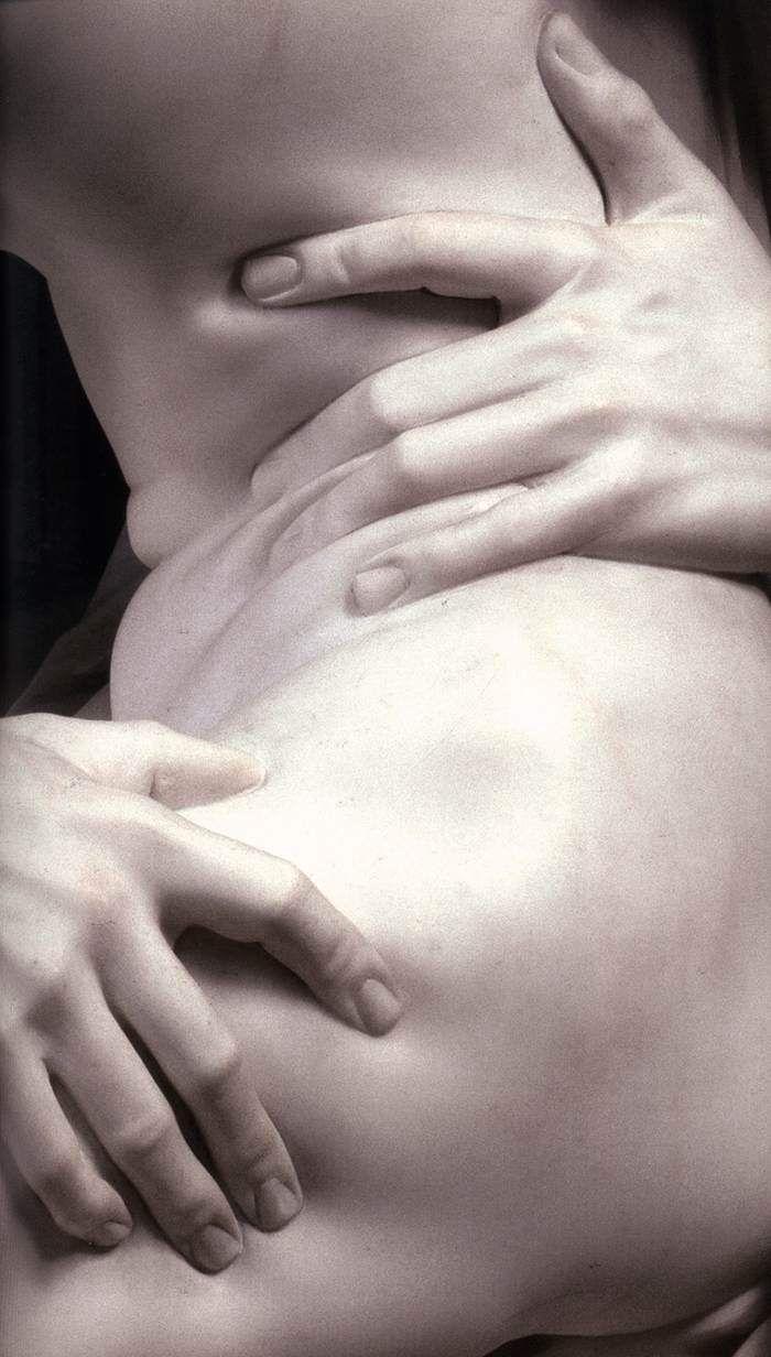 El Rapto De Proserpina Gian Lorenzo Bernini Arte Pinterest  # Muebles Kiki Guimar