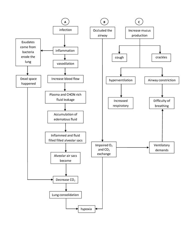 pathophysiology of pneumonia page:2 | Nursing | Pinterest | Med ...