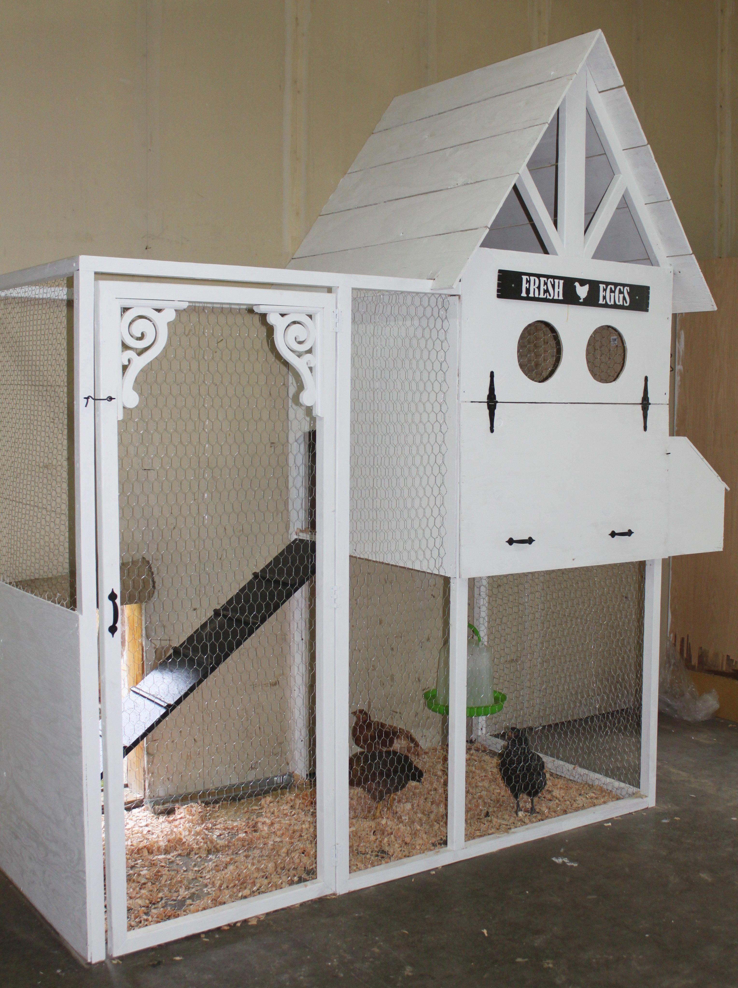Image Result For Indoor Chicken Coop Chickencage Chicken Diy Diy Chicken Coop Plans Diy Chicken Coop