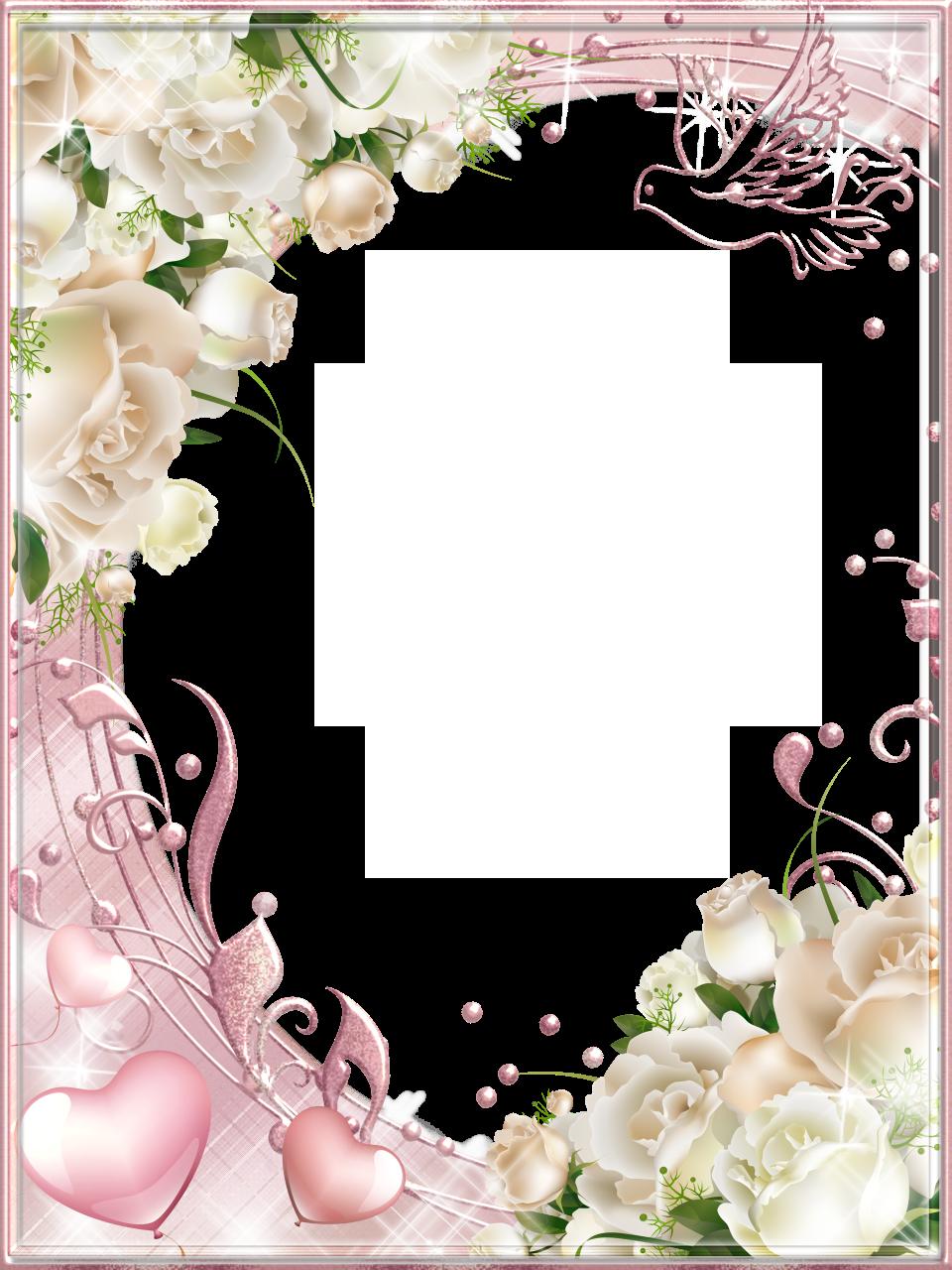 Witte Rozen Roze PNG Photo Frame Rose frame, Boarders