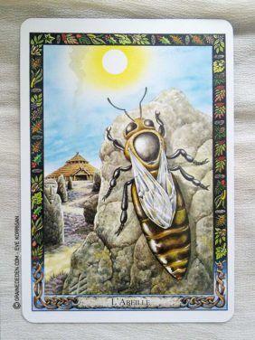 L Oracle Des Druides De Philip Et Stephanie Carr Gomm Animales Tarot Tarot Divinatoire