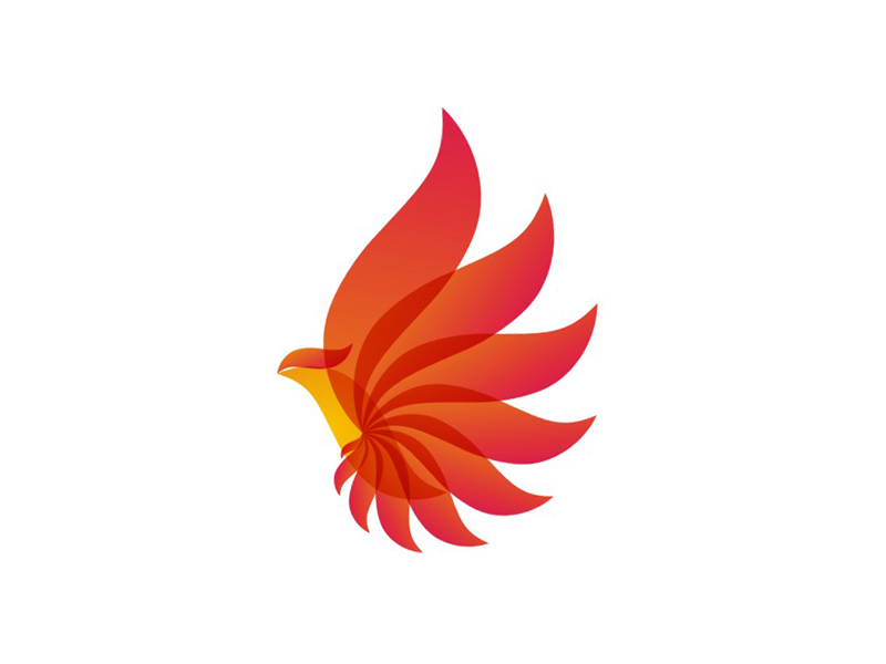 Phoenix Icon Png 60265 Free Icons Library Energy Logo Design Energy Logo Bird Logo Design