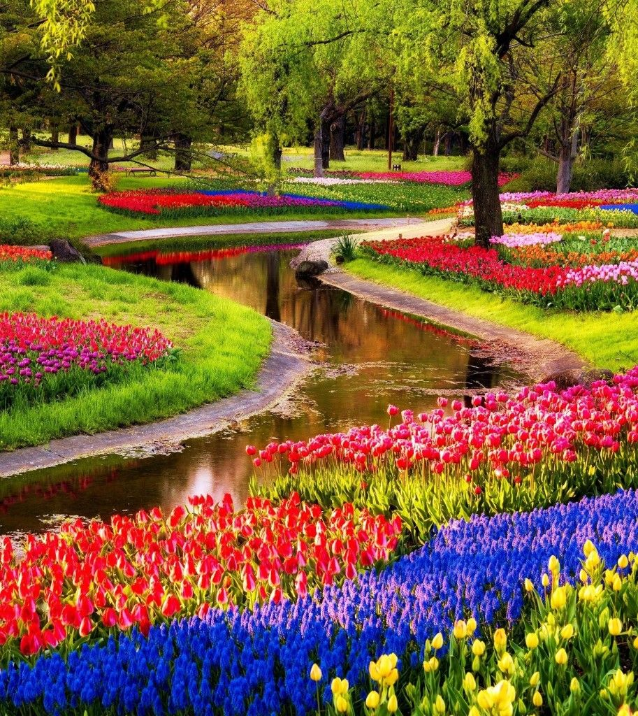 14 Reasons to visit the Netherlands in Spring! Most
