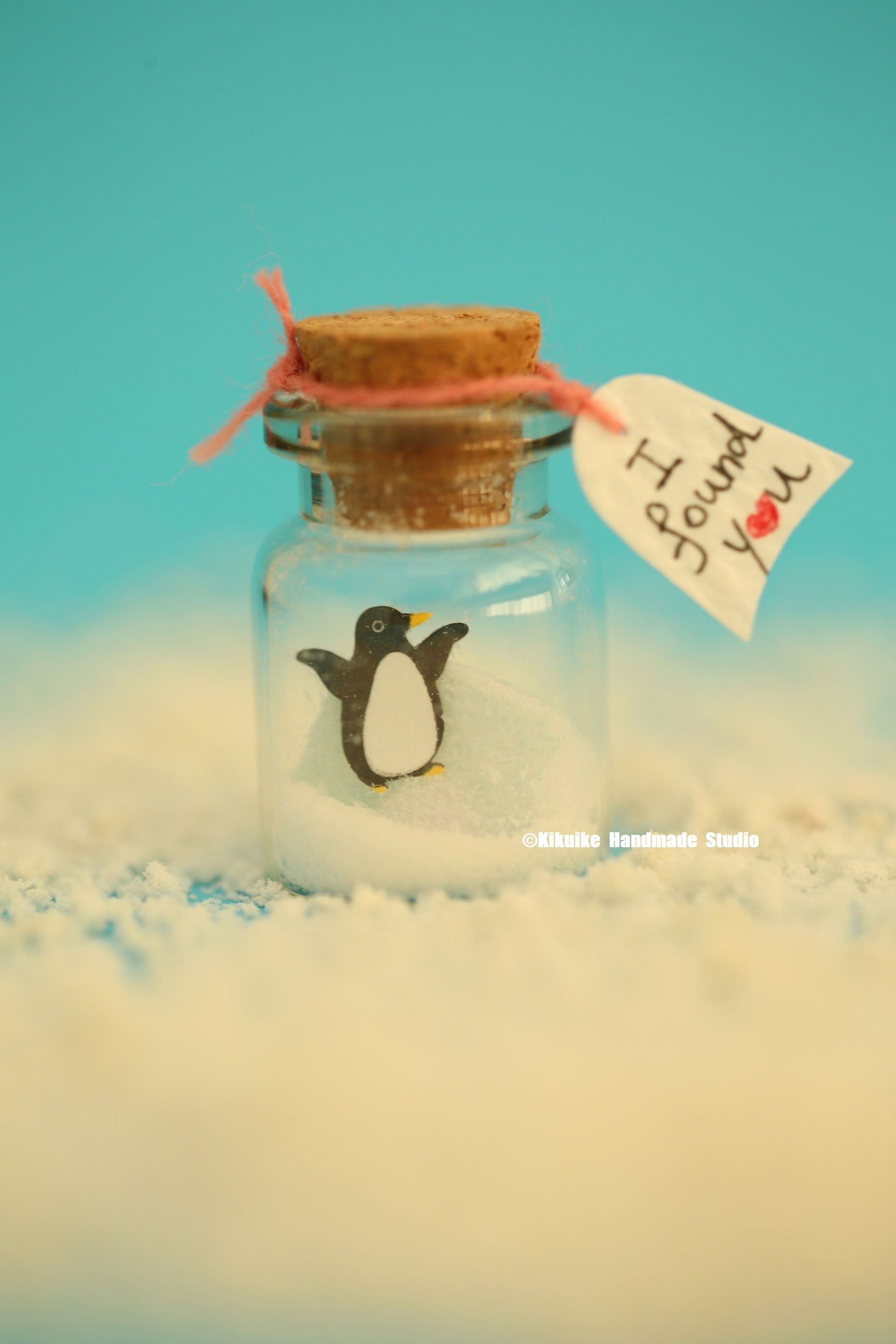 I Found You,Penguin,Tiny Message In A Bottle,Miniatures,Personalised Gift