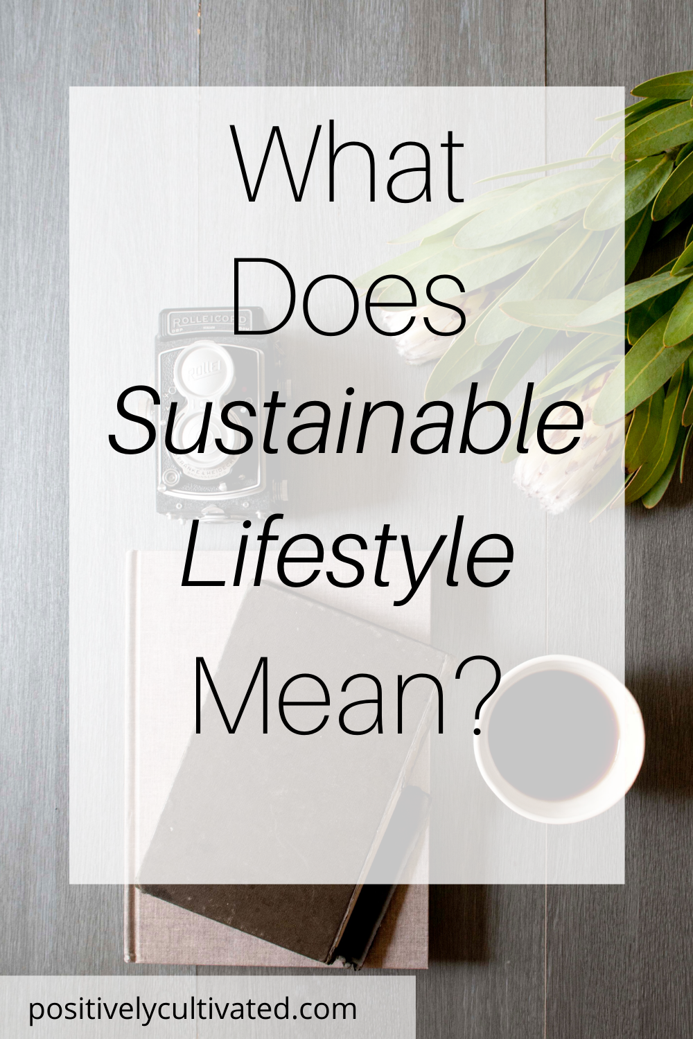 What Does Sustainable Lifestyle Mean Sustainable Lifestyle Lifestyle Meaning Sustainability