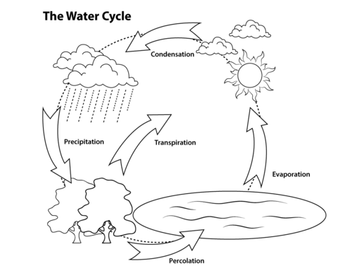 El Ciclo del Agua Dibujo para colorear. Categorías: Fenómenos ...