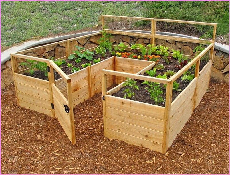 17 Best ideas about Raised Vegetable Gardens on Pinterest Raised