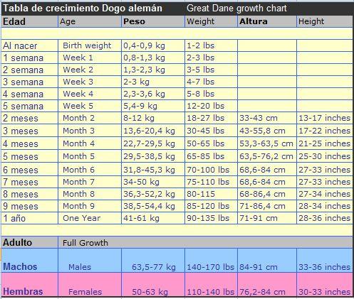Great dane growth chart tabla de crecimiento del gran danes also rh pinterest