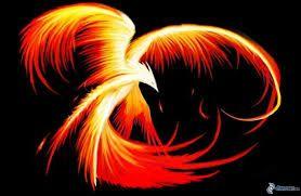 Resultado de imagen de pajaro de fuego