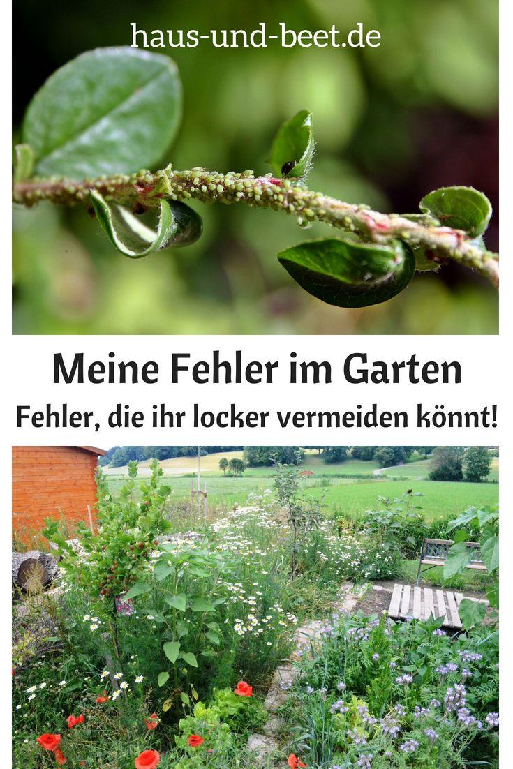Meine Fehler im Garten – Das empfehle ich euch nicht #gemüsegartenanlegen