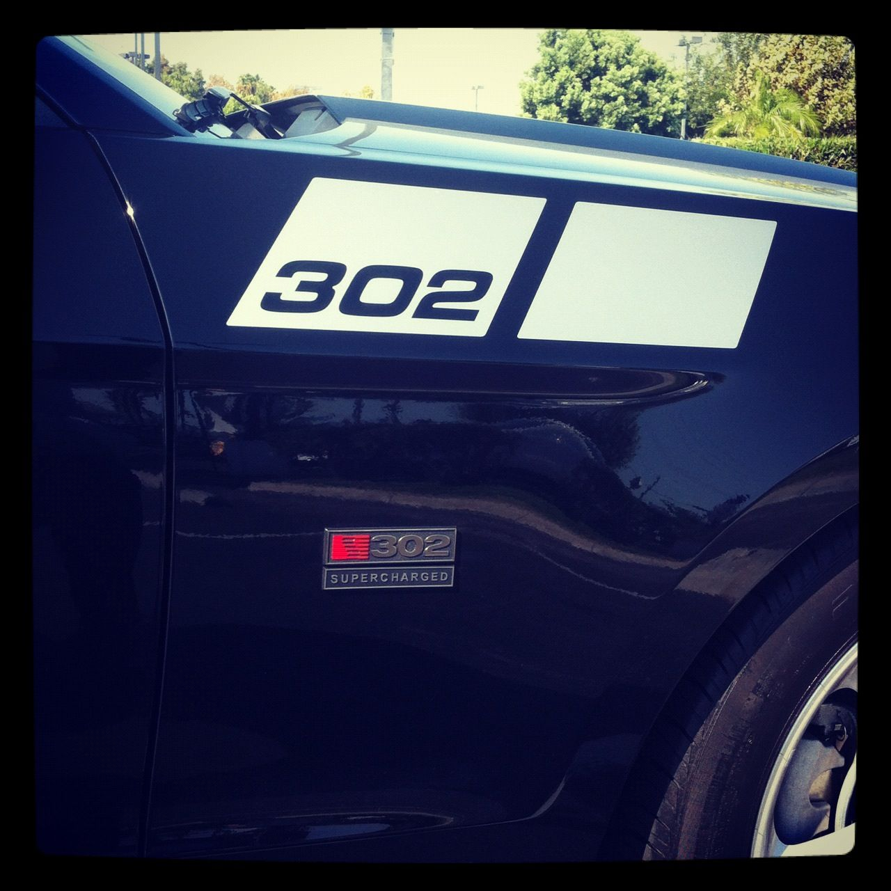 Special Edition # Saleen Mustang...
