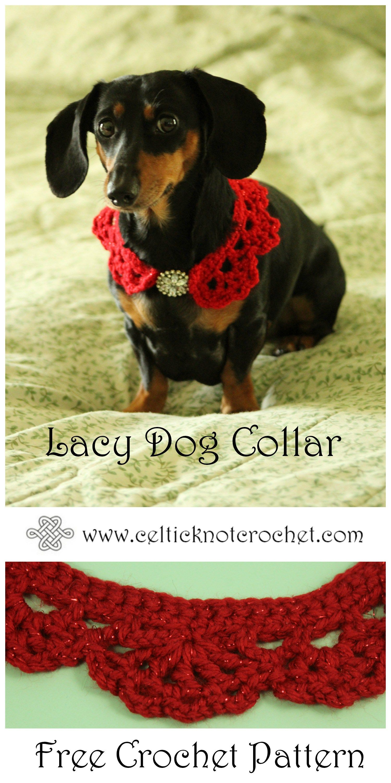Lacy Dog Collar - Celtic Knot Crochet   Cute Animal pics   Pinterest ...