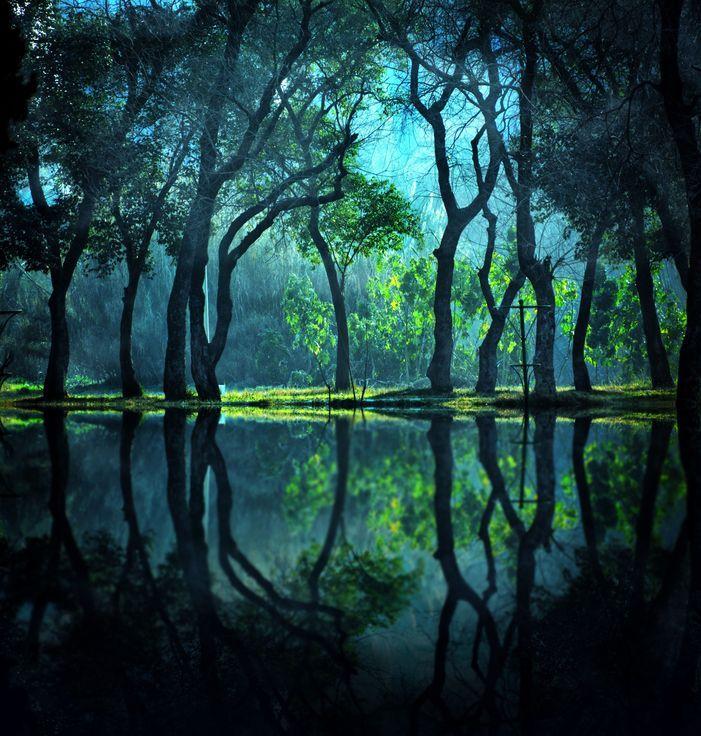 Today S Best Photos National Geographic 風景 美しい風景 風景の絵
