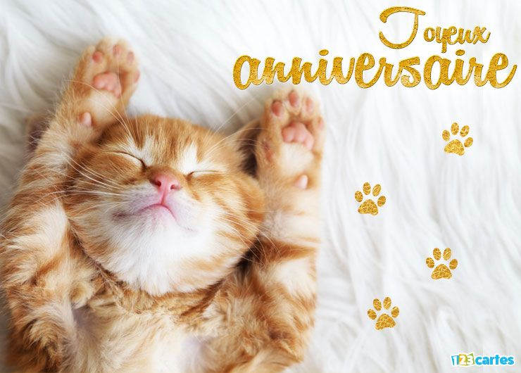 carte joyeux anniversaire le chat qui dort à envoyer sur