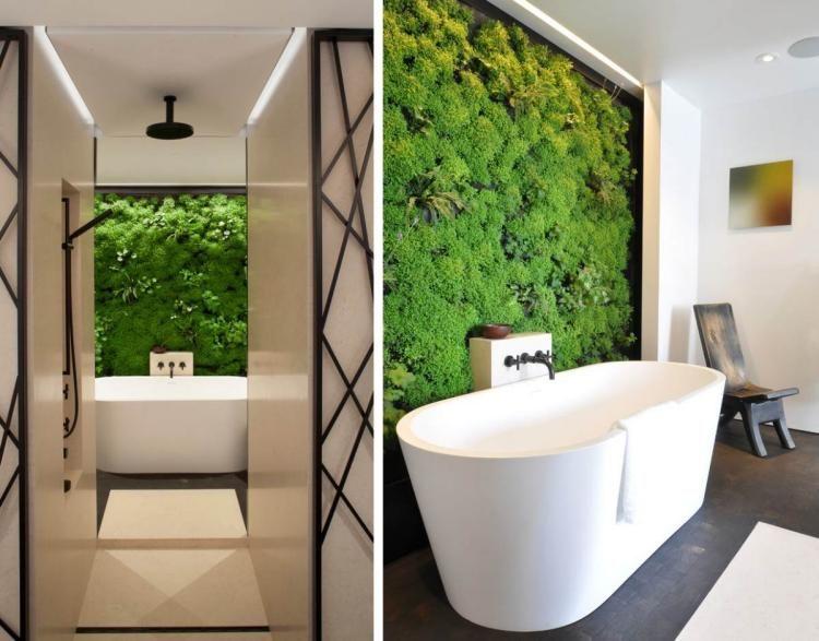 Mur végétal intérieur en 80 idées pour la maison écologique ...