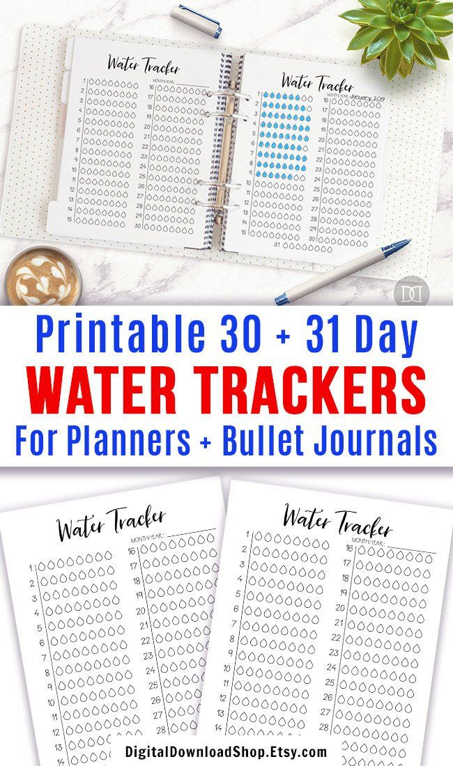 2 Water Tracker Printables, Bullet Journal Hydrate Tracker, Hydration Monthly Tracker, Water Reminder, Wellness Planner Printable, Fitness