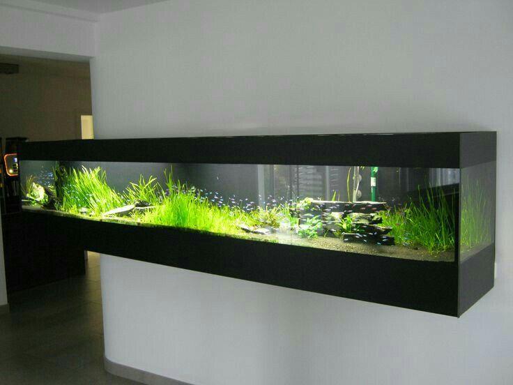 Pin By Luis Angel On Ideas Wall Aquarium Aquarium Design Diy Aquarium